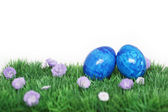 Two blue eggs — Stock Photo