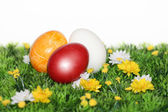 Beautiful Easter Eggs — Stockfoto