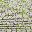 Cobble stone pavers — Stock Photo #6742674