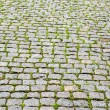 Cobble stone pavers — Stock Photo