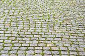 Cobble stone pavers — Stock Photo
