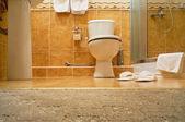 WC, bathrobe, shower cubicle. — Stock Photo