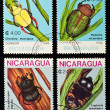 Beetles stamps collection. — Stock Photo