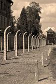 Auschwitz Birkenau concentration camp. — Stock Photo