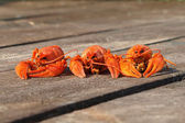 Three red boiled crawfish on a boards. — Stock Photo