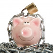 Stock Photo: Saving pig is secured with lock