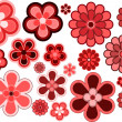 Stock Photo: Many various size and shapes flowers