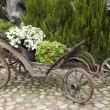 Old wooden wagon filled with flowers — Stock Photo