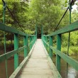 Green monkey bridge in the forest - Stock Photo