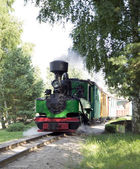 Old green train is trembling — Stock Photo