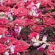 Texture of red roses — Stock Photo