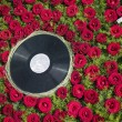Retro record plate with flower background — Stock Photo