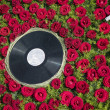 Retro record plate with flower background — Stock Photo #6406902