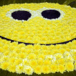 Stock Photo: Big yellow smile face
