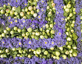 Apples and violet flowers — Stock Photo