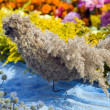Bird made from colorful flowers, nature and beauty concept — Stock Photo