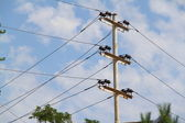 Wires on the pole — Stock Photo
