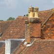 Stock Photo: Old roof tops
