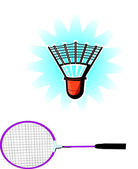 Badminton Racket and Puck — Stock Vector