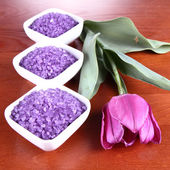 Spa salt and a tulip — Stock Photo
