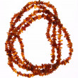 Amber necklace — Stock Photo #5767540