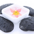 Spa stones and floating flower — Stock Photo #5898163