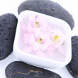 Spa stones and floating flowers — Stock Photo