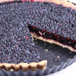Blueberry Tart — Stockfoto