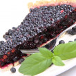 Blueberry Tart — 图库照片