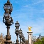 Bridge in Paris — Stock Photo #5516625