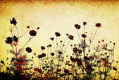 Květinový styl textury s prostorem pro text nebo obrázek — Stock fotografie