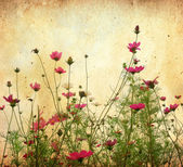 Old flower paper textures — Stock Photo