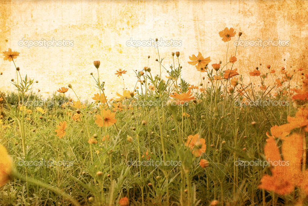 Old flower paper textures - perfect background with space for text or image — Stock Photo #5654823