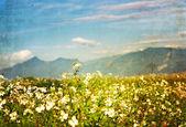 Texturas de papel flor antigua — Foto de Stock