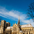 Notre Dame Cathedral in paris france — Stock Photo