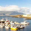 Stock Photo: Djupivogur fishing village - Iceland