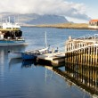 Fishing harbor in Djupivogur village - Iceland — Foto Stock