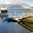 Fishing harbor in Djupivogur village - Iceland — Stock Photo