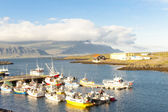 Djupivogur fishing village - Iceland — Stock Photo