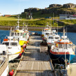 Fishing harbor in Djupivogur -  Iceland — Stock Photo