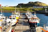 Fishing harbor in Djupivogur - Iceland — Stock Photo