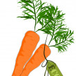Big and health orange carrot - Vector - Stock Vector