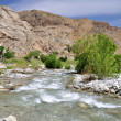 Stock Photo: Whitewater River view