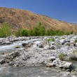 Stock Photo: View of Whitewater Canyon