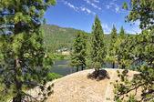 Hilltop lake view — Stock Photo
