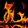 Fire and flames. - Stockfoto