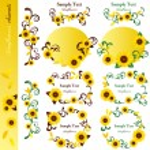 Sunflower elements set — Stock Vector #5847855