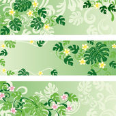 Monstera banners set — Stock Vector