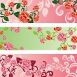 Rose banners set — Stock Vector