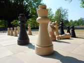 Chess in the park — Stock Photo